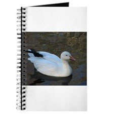 snow geese Journal