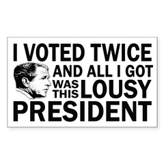 I Voted Twice and all I Got (bumper sticker)