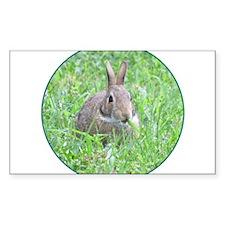 Rabbit Eating Decal