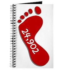 24,902 Hanson Walk Journal