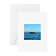Whales Greeting Cards (Pk of 10)