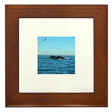 Whales Framed Tile