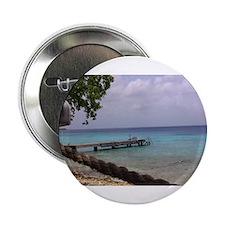 """Nice view Curacao pelikan 2.25"""" Button"""