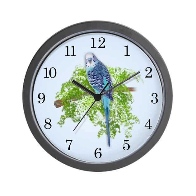 Blue budgie on green wall clock by thehappymuse for Green wall clocks uk