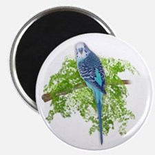 Blue Budgie on Green Magnet