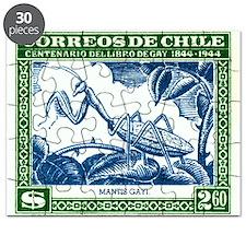 Antique 1948 Chile Praying Mantis Postage Stamp Pu
