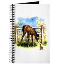 FOAL PLAY Journal