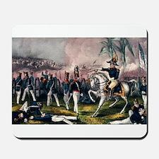 General Taylor at the Battle of Buena Vista - 1847