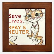 Cute Shelter cat Framed Tile