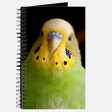 Green Parakeet Journal