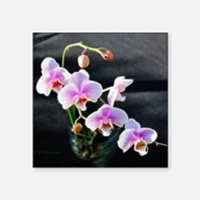 """Pink Orchids Square Sticker 3"""" x 3"""""""