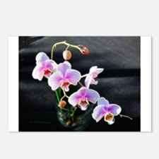 Pink Orchids Postcards (Package of 8)