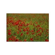 Poppy Landscape Rectangle Magnet