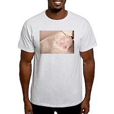 Pale rose T-Shirt