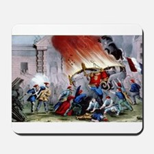 The French revolution - burning the royal carriage