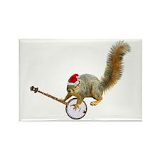 Christmas Banjo Squirrel Rectangle Magnet