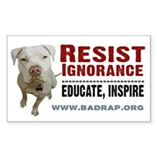 Resist Ignorance Rectangle Sticker