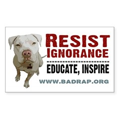 Resist Ignorance Rectangle Decal