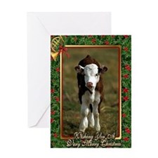 Hereford Calf Christmas Card Greeting Card