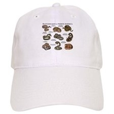 Rattlesnakes of North America Cap