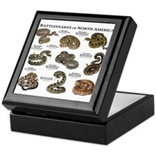 Rattlesnakes of North America Keepsake Box