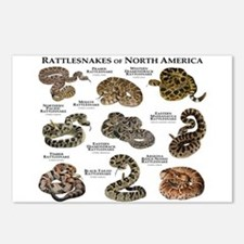 Rattlesnakes of North America Postcards (Package o