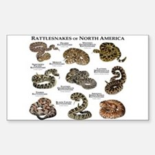 Rattlesnakes of North America Sticker (Rectangle)