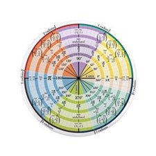 """Unit Circle with Radians 3.5"""" Button"""