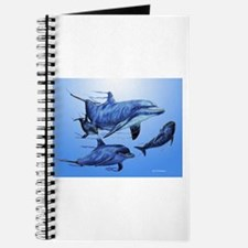 Dolphin Family Journal