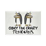 Crazy Penguins Rectangle Magnet