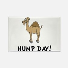 Hump Day Rectangle Magnet (10 pack)