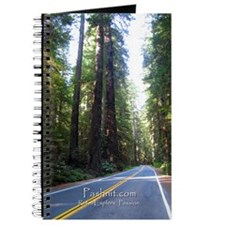 NorCal Redwoods - Pashnit Notebook Journal