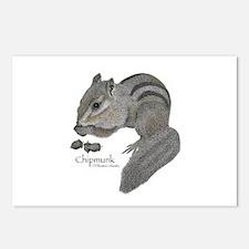 Chipmunk Postcards (Package of 8)