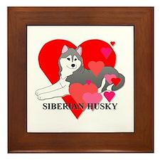 Gray Siberian Husky Framed Tile