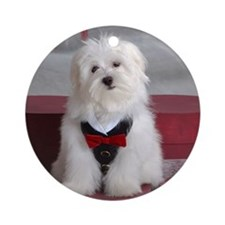 Holiday Maltese with Vest Ornament (Round)