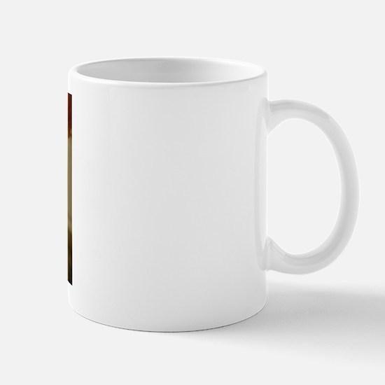 Wrinkled cat Mug