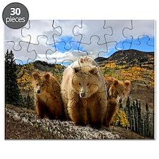 Bear Family Puzzle