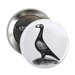 English Carrier Pigeon Button