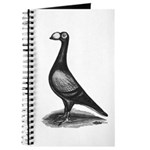 English Carrier Pigeon Journal
