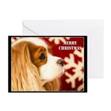 Christmas Cavalier King Charles (Pk of 20) Cards