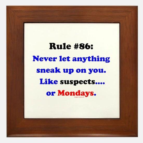 Rule 86 Nothing Sneaks Up On You Framed Tile