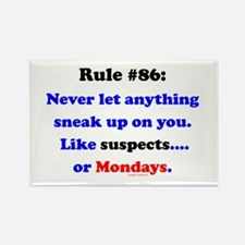 Rule 86 Nothing Sneaks Up On You Rectangle Magnet