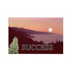 Inspire Success Magnets