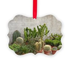 CACTUS FAMILY Ornament