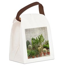CACTUS FAMILY Canvas Lunch Bag