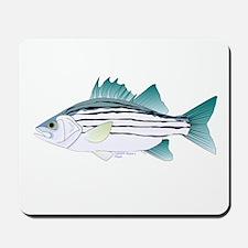 White Bass ft Mousepad