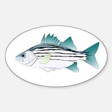 White Bass ft Decal