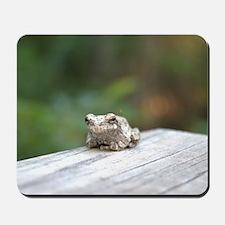 Resting Frog Mousepad