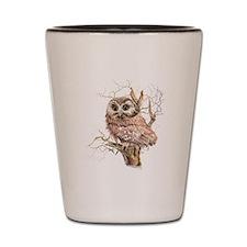 Cute Baby Saw Whet Owl Watercolor Bird Shot Glass