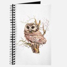 Cute Baby Saw Whet Owl Watercolor Bird Journal